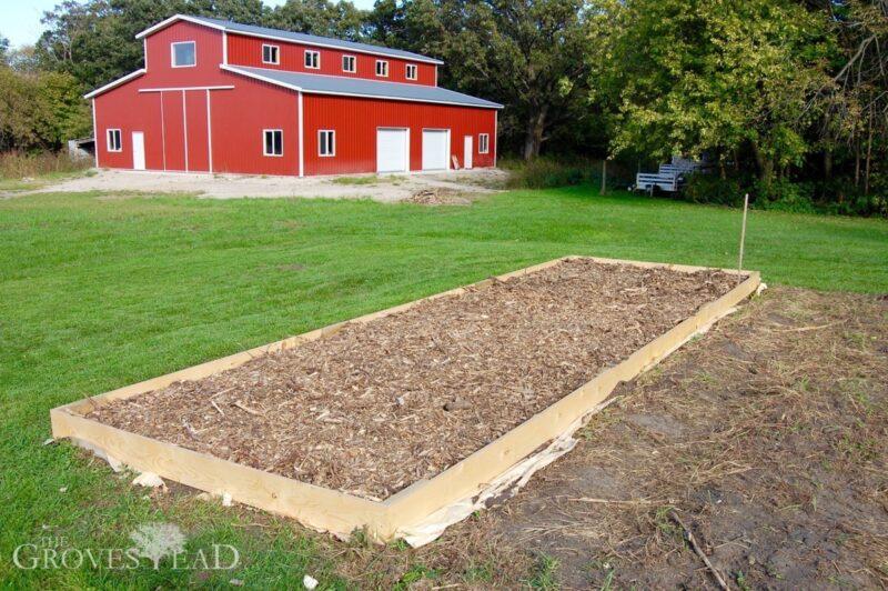 Small Back to Eden garden plot