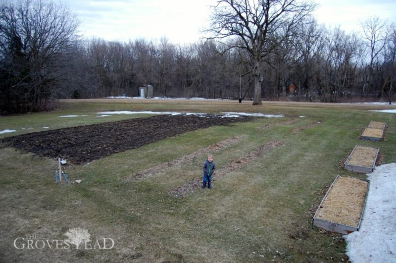 Planned garden plot (early April)