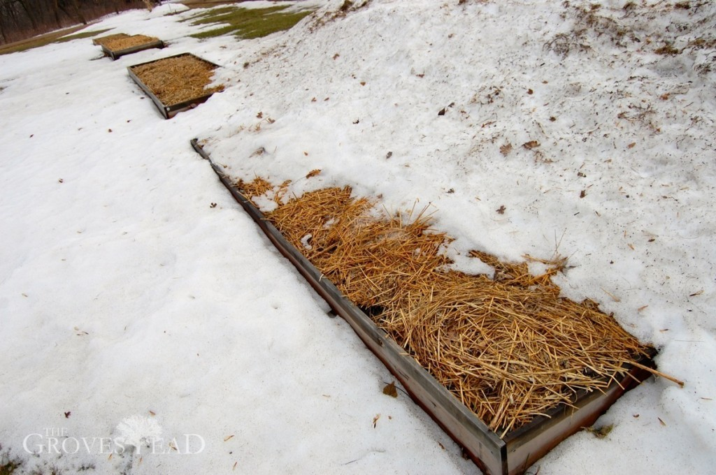Snow melting off raised beds