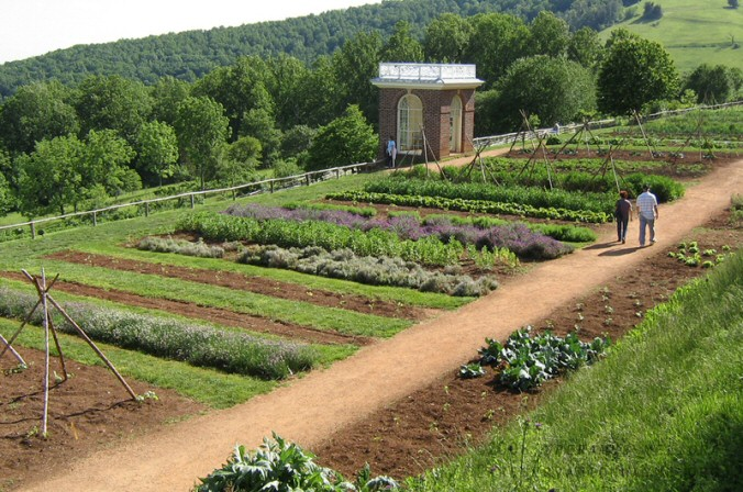 Thomas Jefferson's gardens at Monticello