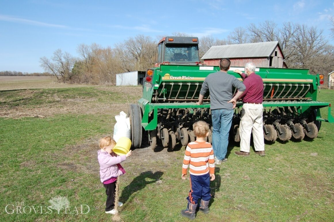 Figuring out the seed drill settings
