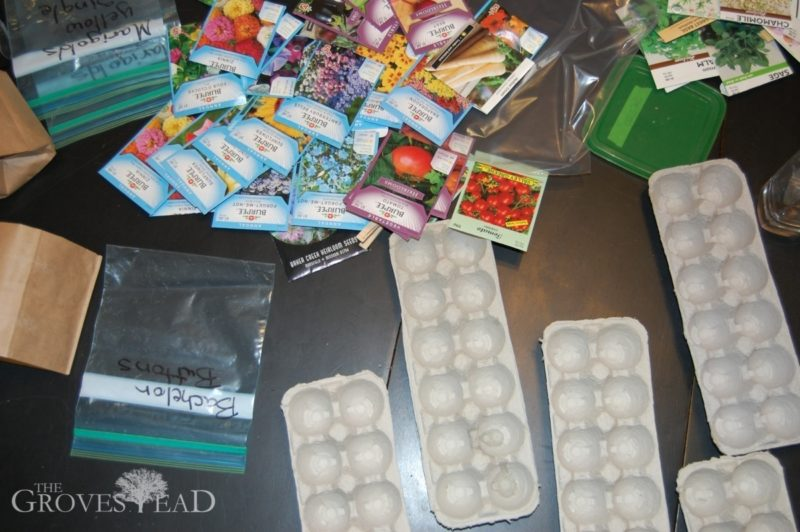 Seed packets and egg cartons for starting seedlings