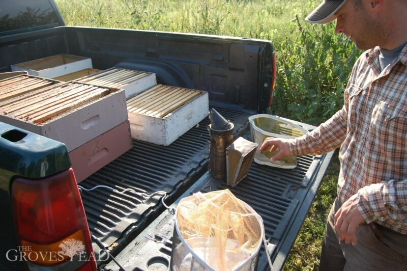 Last year's beekeeping setup