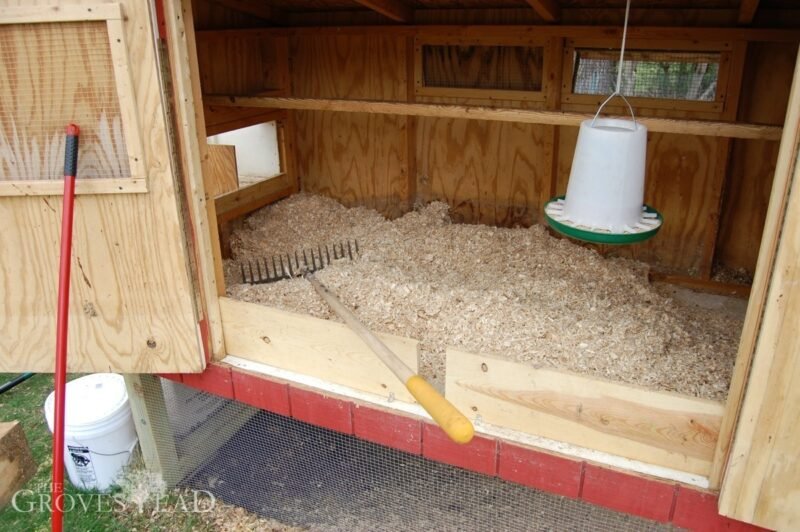 Chicken coop is all clean with fresh bedding.