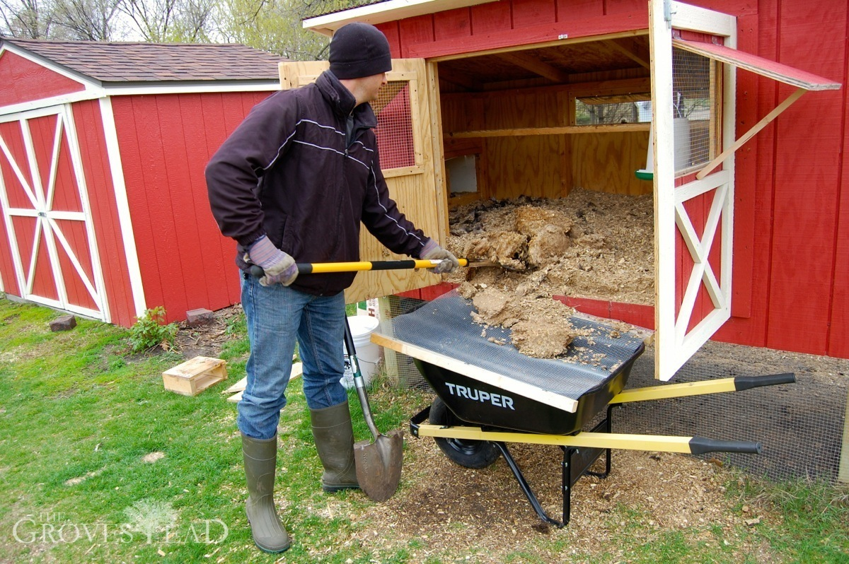 easy chicken coops to build: Chicken Coop Clean Out