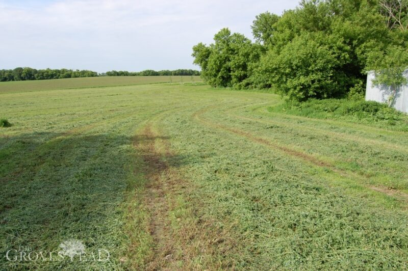 First cutting of our hay field