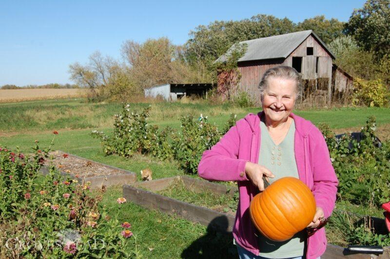 Zina's pumpkin
