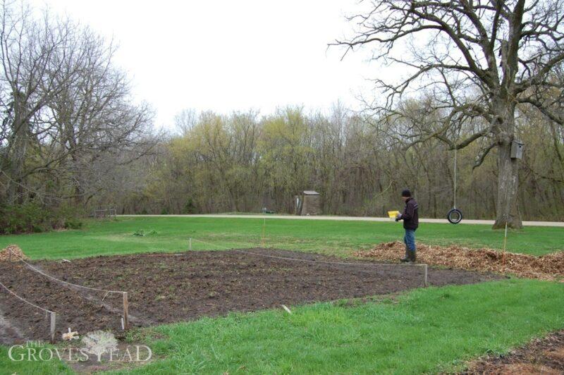 No-till garden plot