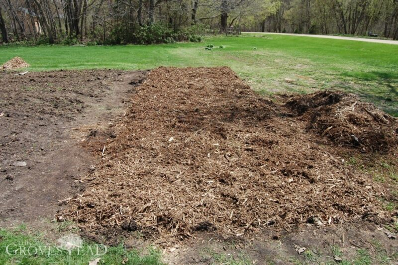 Woodchips spread over no-till garden plot
