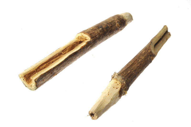 Wooden spiles were used  by Native Americans to draw sap from maple trees (Courtesy of osv.org)