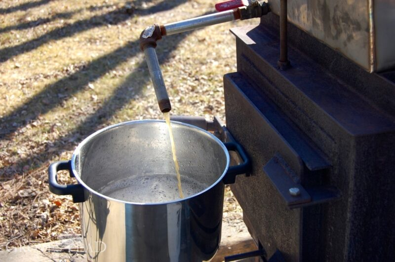 Draining the syrup out of a spout on the evaporator pan