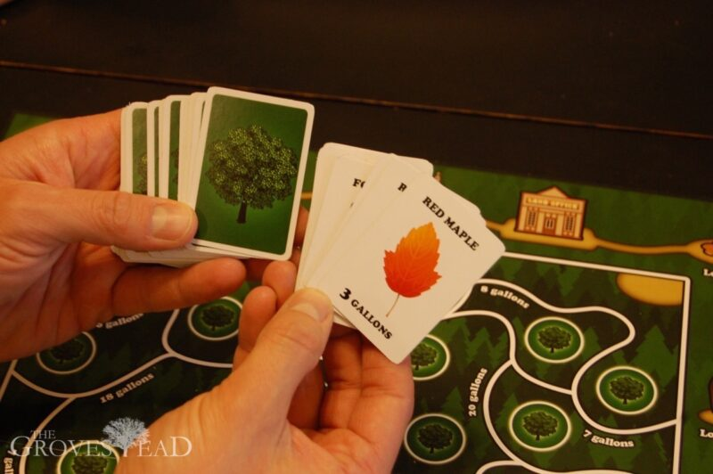 Game cards from Sugar Maple