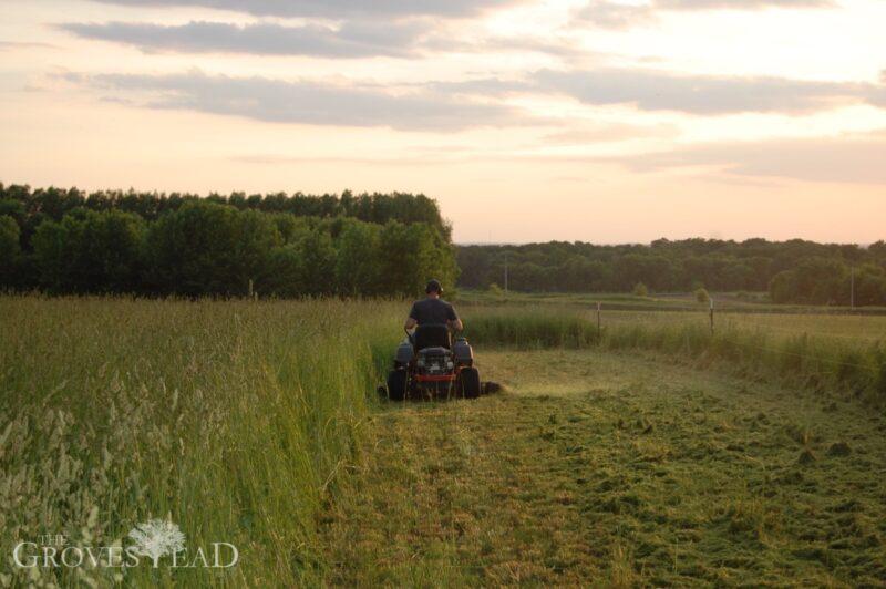 Mowing Tall Grasses