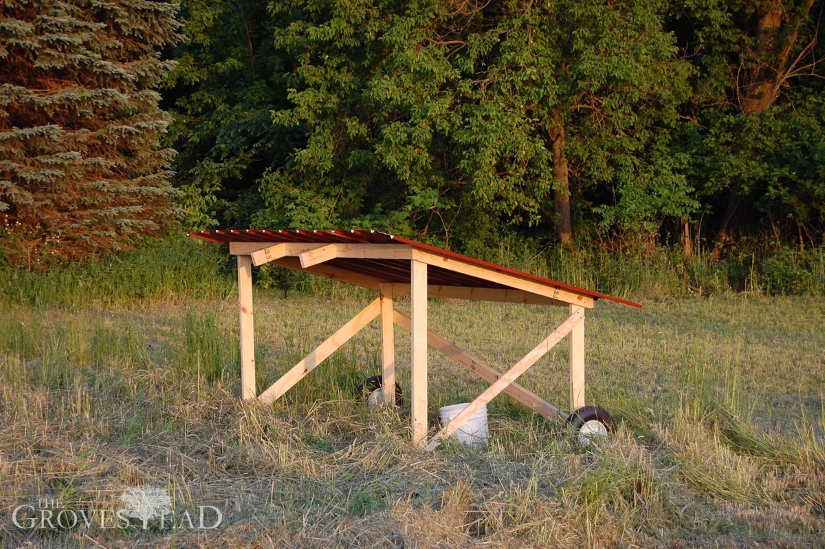 Portable Shelters Farm : The grovestead farm family fun