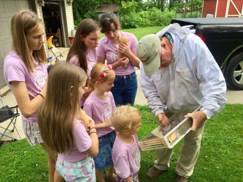 Beekeeping lesson